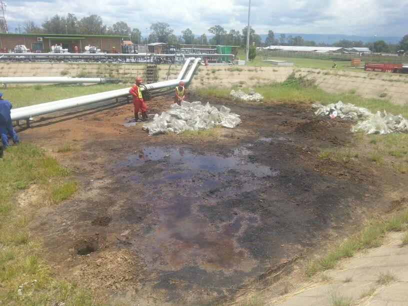 Ô nhiễm dầu sinh học, trước đây - 4e_preview
